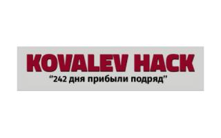Обзор проекта Kovalev hack