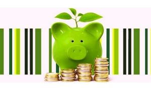 Понятие, особенности и риски инвестиционного вклада