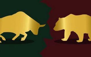 Быки и медведи на бирже