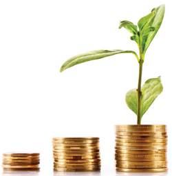 Направления развития инвестиционного потенциала