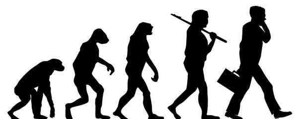Эволюция и развитие человека