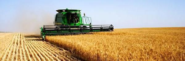 Инвестирование в сельское хозяйство