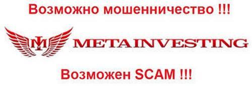 Эмблема Metainvesting и предупреждение о СКАМе