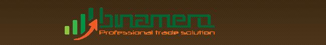 Торговый знак BinAmero