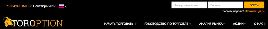 Шапка сайта TorOption