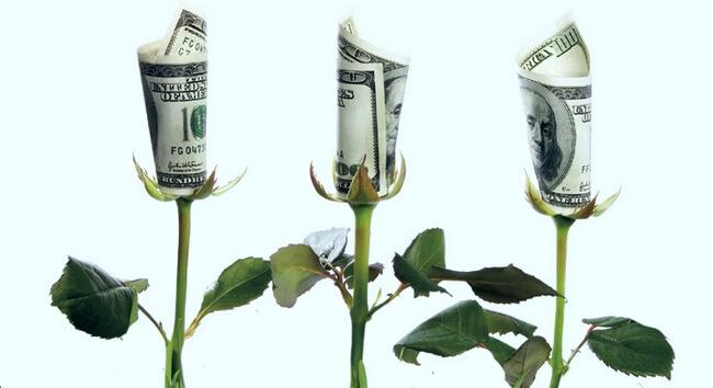 Три розы, у которых вместо бутонов свернутые купюры